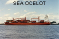 SEA OCELOT IMO9149304
