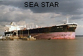 SEA STAR IMO9114608