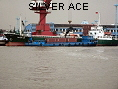 SILVER ACE IMO8808135