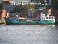 SILVER WHALE IMO8862193