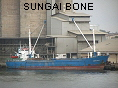 SUNGAI BONE IMO7203950