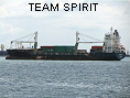 TEAM SPIRIT IMO9346421