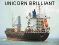 UNICORN BRILLIANT IMO9167514
