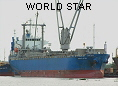 WORLD STAR IMO9260988