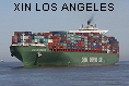 XIN LOS ANGELES IMO9307217